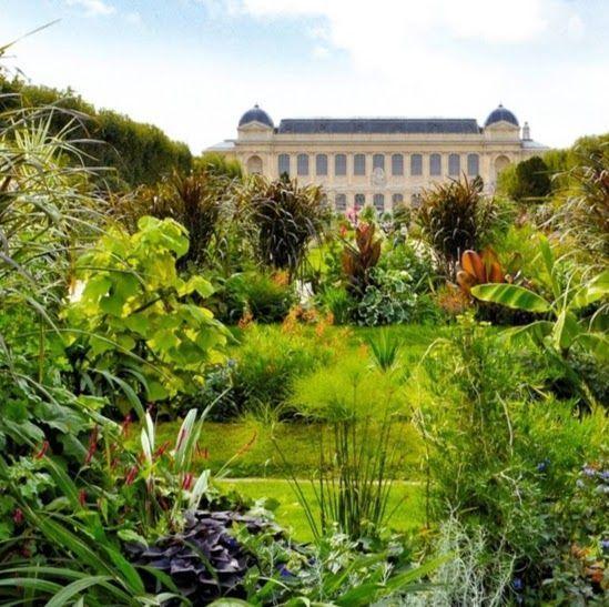 Rallye p destre au jardin des plantes abm aventure du for Plantes paris