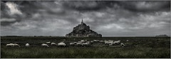 Rassemblement national Mont St Michel