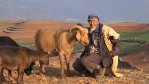 Yunnan (Chine)
