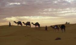 Sahara Tunisien et villages Berbères