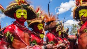 Visioconférence Danse avec les Papous.