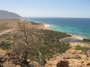 Visioconférence Île de Socotra (Yémen)