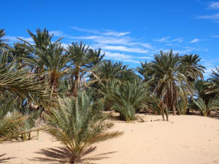 Palm Desert datantdestin de matchmaking lente