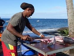 Vente directe sur la plage - Martinique