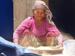 Femme gurung égrenant le riz