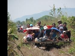 Bambo Train