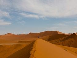 Au milieu du désert