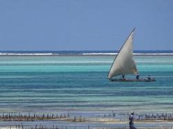 PLage le soir sur la cote Ouest de Zanzibar