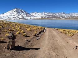 Laguna Miscanti, une porte sur l'Altiplano