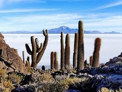 Le désert du Salar en Bolivie