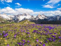 le printemps dans les Alpes