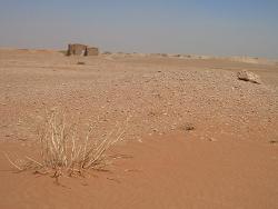 désert syrien